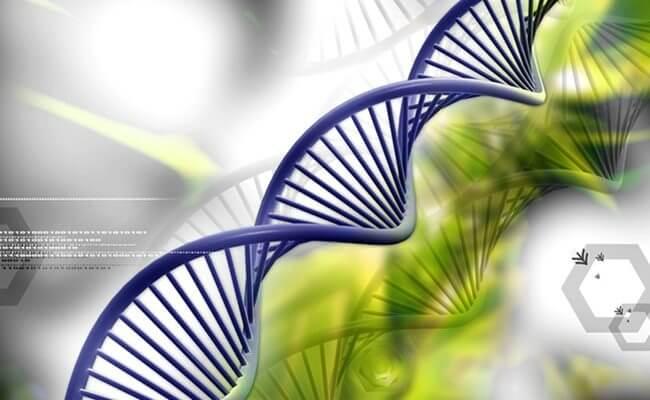 China Genetic Testing Market